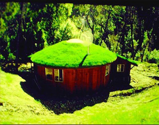 Round house grass roof